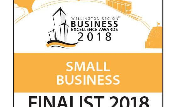 Finalist in the Wellington Region Business Excellence Awards
